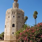 Picture - Torre del Oro in Seville, which houses the Maritime Museum.