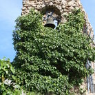 Picture - Vince covered church tower in Mijas.
