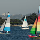 Picture - Two yachts and a catamaran are sailing in a Mission Bay, San Diego.