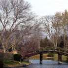 Picture - Bridge over water at the Missouri Botanical Garden in St Louis.