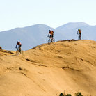 Picture - Mountain bikers near Moab.