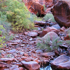 Picture - A creek in Hunters Canyon near Moab.
