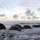 Picture - Unique rock formations of the Moeraki Boulders.