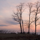 Picture - Colorful sky over Monmouth Battlefield State Park.