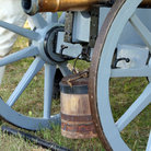 Picture - Cannon at Monmouth Battlefield State Park, New Jersey.