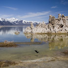Picture - Lake Mono and South Tufa Area, Mono Basin National Forest Scenic Area.