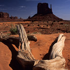 Picture - East Mitten Butte in Monument Valley.