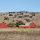 Picture - Red farm buildings, Morgan Hill.
