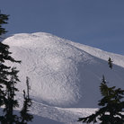 Picture - Ski hill of Mount Baker.