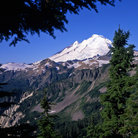 Picture - The glacier covered Mount Baker in Mount Baker-Snoqualmie National Forest.