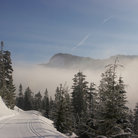 Picture - Ski track at the Nordic Ski Area at Snoqualmie.