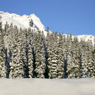 Picture - A snow covered Snoqualmie Pass.