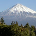 Picture - Snow covered Mount Fuji.