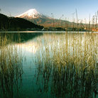 Picture - The shoreline near Mount Fuji.