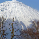 Picture - The top of Mount Fuji.