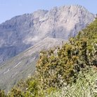 Picture - View of Mount Meru.