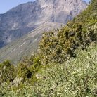 Picture - Mountain side view of Mount Meru.