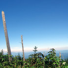 Picture - View from Mount Mitchell.