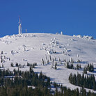 Picture - The snow covered Mount Spokane Ski and Snowboard Park
