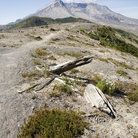 Picture - Landscape around Mount St Helens volcano.