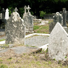 Picture - Celtic tombstones in Muckross Friary, Killarney.
