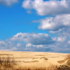Picture - Jockey's Ridge State Park in Kitty Hawk, North Carolina.