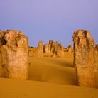 Picture - The unique formations of Nambung National Park.