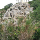 Picture - Temple ruins outside of Narbonne.