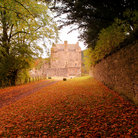 Picture - Autumn at the Neidpath Castle.