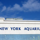 Picture - New York Aquarium, Brooklyn.