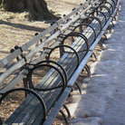 Picture - Row of benches in Central Park, New York City. .