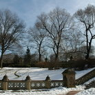 Picture - Central Park in Winter.