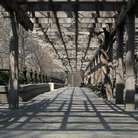 Picture - Pergola in Central Park, New York.