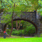 Picture - Bridge in Central Park, New York.