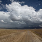 Picture - Road through Ngorongoro Park.