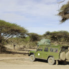 Picture - A jeep at the Ngorongoro Conservation Area.