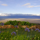 Picture - View over the Ngorongoro Crater after sunrise.