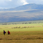 Picture - Masai warriors walking across an area of the Ngorongoro Crater.