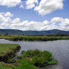 Picture - Landscape in the Ngorongoro Crater.