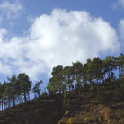 Picture - Landscape of the Troodos Range.