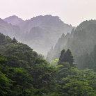 Picture - Misty hills of Nikko.