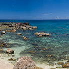 Picture - Shark's Cove, a popular snorkeling spot in Oahu.