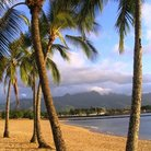 Picture - Haleiwa beach on the north shore of Oahu.