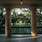 Picture - Looking North from Oak Alley Plantation.