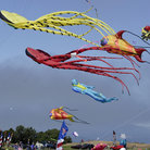 Picture - Oakland Kite Festival.