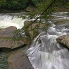 Picture - Swallow Falls near Oakland, Maryland.