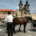 Picture - Horse and carriage in Old Town Square, Prague.