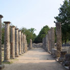 Picture - Columns of ancient Olympia.