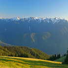 Picture - Mountains and meadows on the Olympic Peninsula.