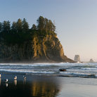 Picture - Second beach at Olympic National Park.